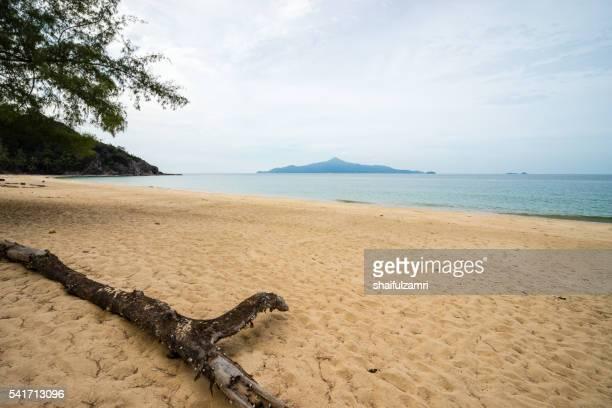 scenic view of the sandy beach in sibu island of johor, malaysia - shaifulzamri stock-fotos und bilder