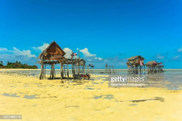 scenic view of the sea gypsy's traditional stilt houses at low tide on maiga island, sabah, malaysian borneo - island of borneo stock pictures, royalty-free photos & images