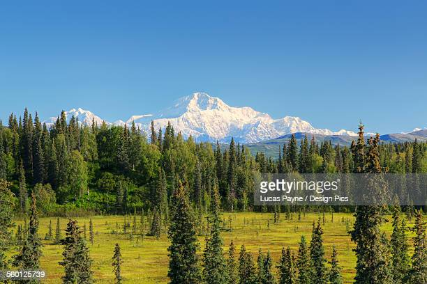 Scenic view of the Southside of Mt. McKinley (Denali) from Petersville Road