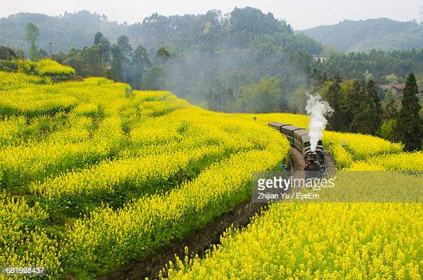 Scenic View Of Train Passing Through Landscape