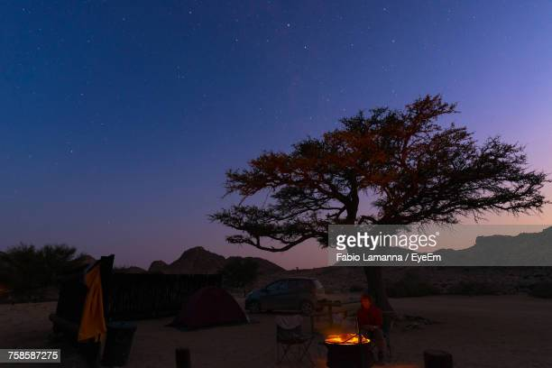 Scenic View Of Tree Against Clear Sky At Night