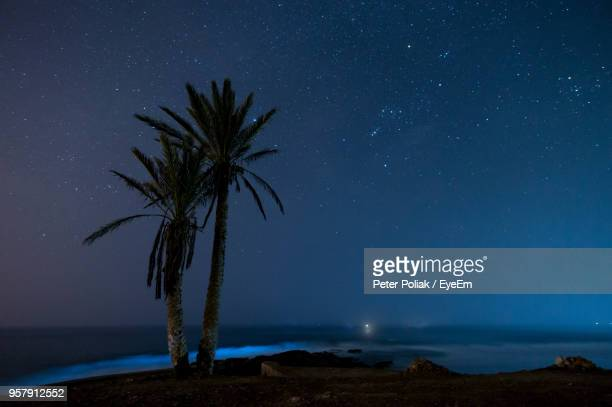 scenic view of tree against sky at night - agadir stock pictures, royalty-free photos & images