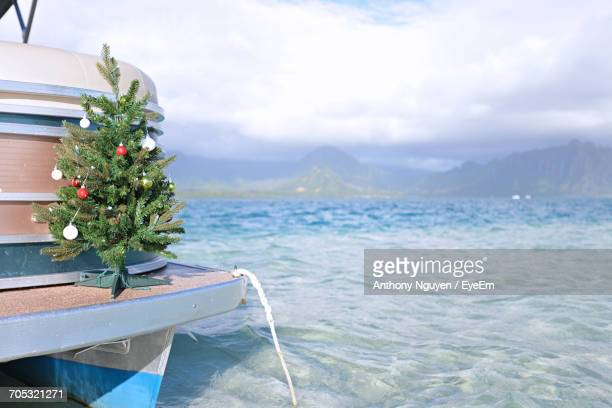 scenic view of tree by mountains against sky - hawaii christmas stock pictures, royalty-free photos & images