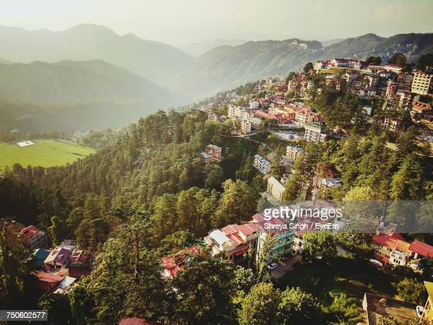 scenic view of tree mountains against clear sky - shimla stock pictures, royalty-free photos & images