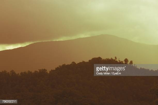 scenic view of tree mountains against sky - pigeon forge stock pictures, royalty-free photos & images