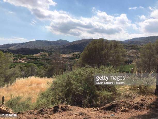 scenic view of tree mountains against sky - lingard stock pictures, royalty-free photos & images