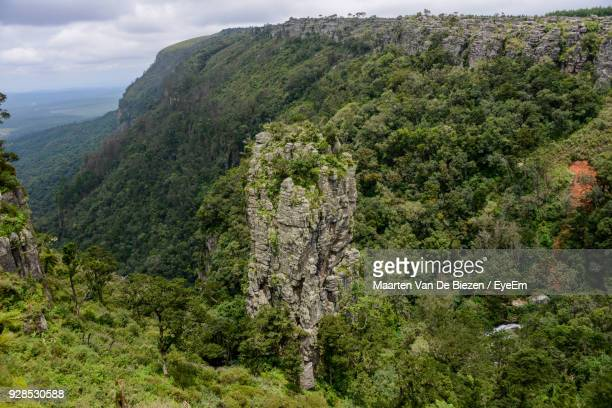 Scenic View Of Tree Mountains Against Sky