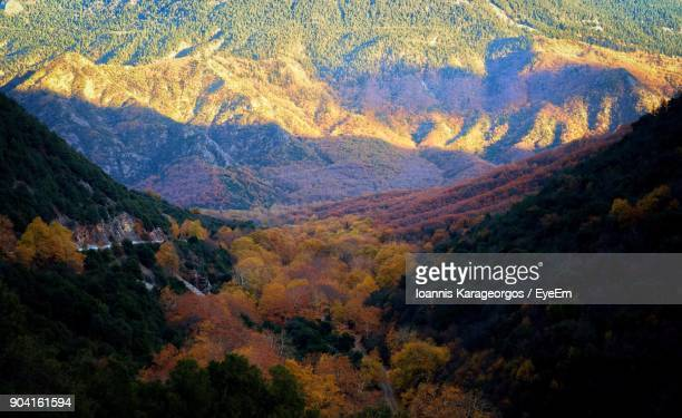 Scenic View Of Tree Mountains During Autumn