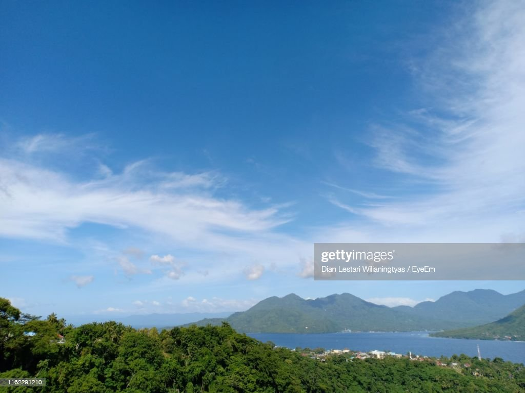 Scenic View Of Trees Against Blue Sky : Stock Photo
