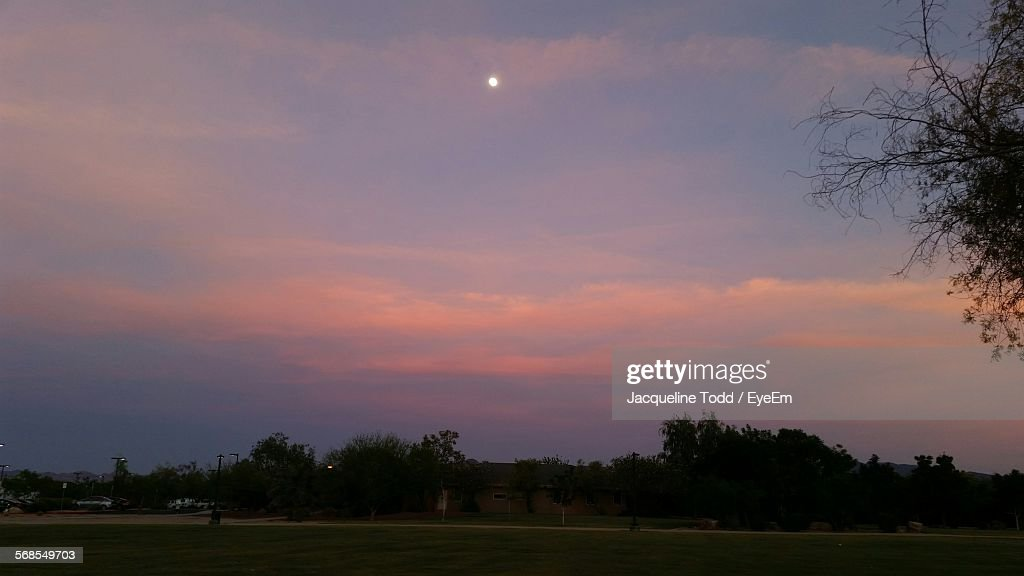 Scenic View Of Trees Against Sky During Dusk : Stock Photo