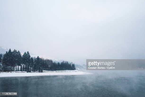 scenic view of trees against sky during winter - bortes stock pictures, royalty-free photos & images