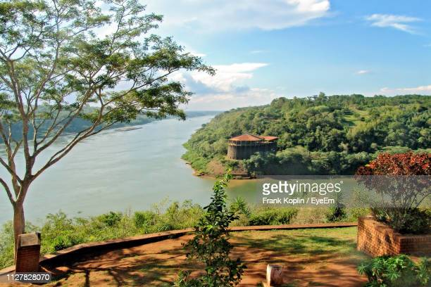 scenic view of trees against sky - paraguay stock pictures, royalty-free photos & images