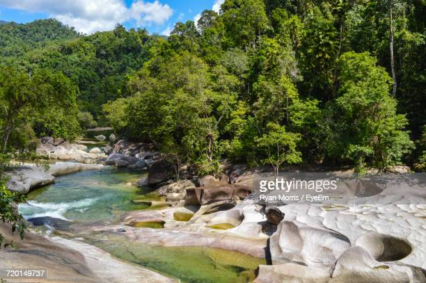 scenic view of trees against sky - cairns stock photos and pictures