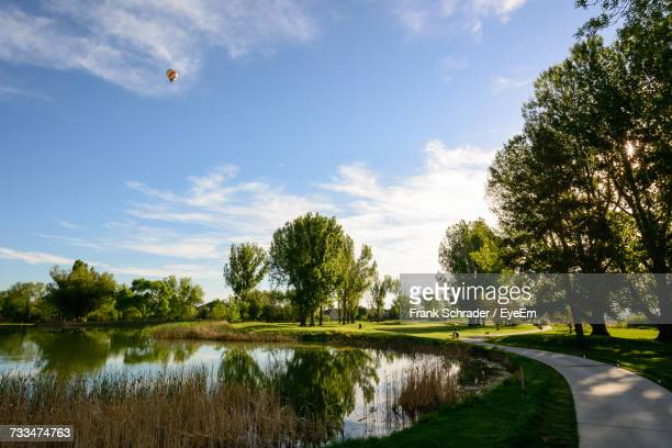 scenic view of trees against sky - frank schrader stock pictures, royalty-free photos & images