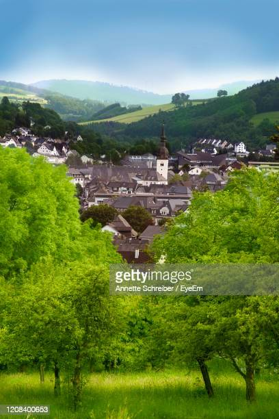 scenic view of trees and buildings against sky - north rhine westphalia stock pictures, royalty-free photos & images