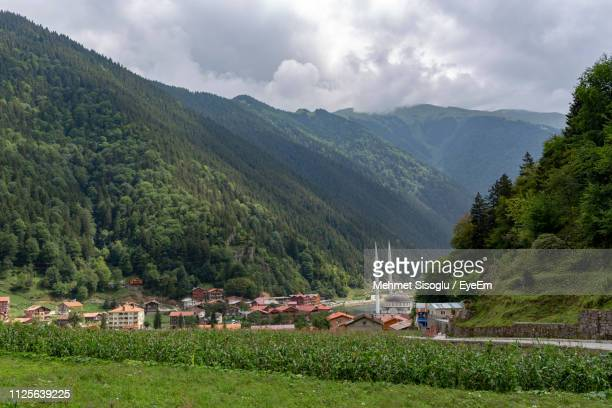 scenic view of trees and houses against sky - trabzon stock photos and pictures