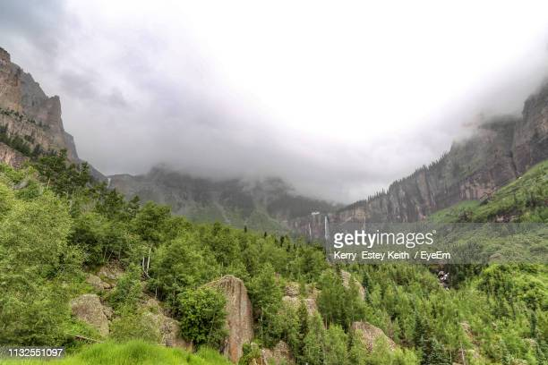 scenic view of trees and mountains against sky - kerry estey keith stock photos and pictures