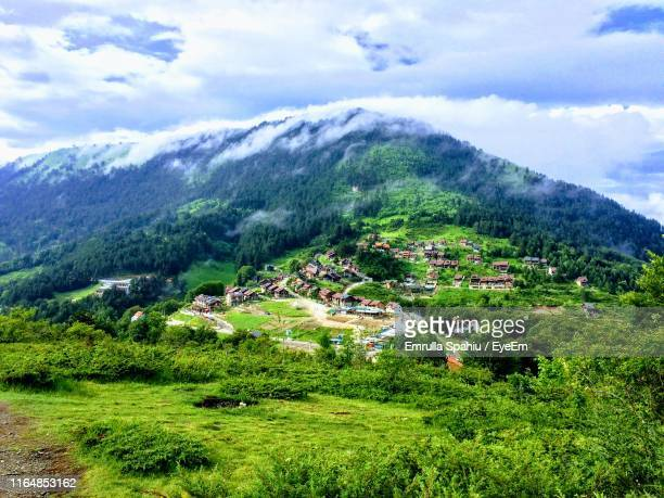 scenic view of trees and mountains against sky - kosovo photos et images de collection