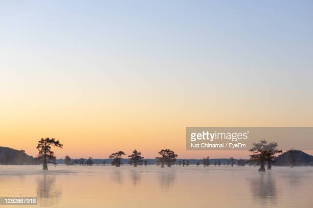 scenic view of trees in lake against sky during dusk - la waterfront stock pictures, royalty-free photos & images