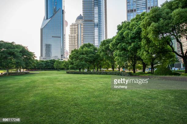 scenic view of trees on grassland at park - public park stock photos and pictures