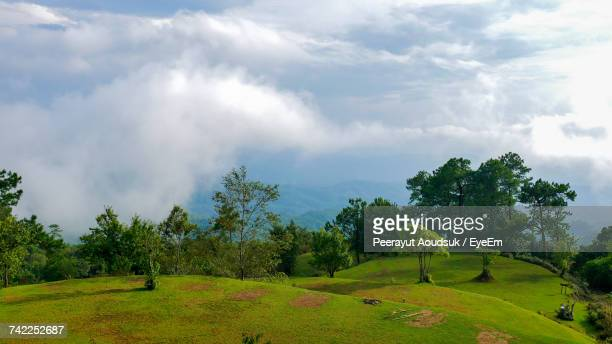 Scenic View Of Trees On Hill At Huay Nam Dang National Park