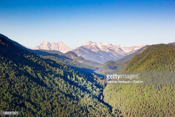 scenic view of trees on mountain against clear sky during sunny day - lenggries stock pictures, royalty-free photos & images