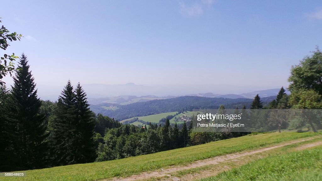 Scenic View Of Trees On Mountains Against Sky : Stock Photo