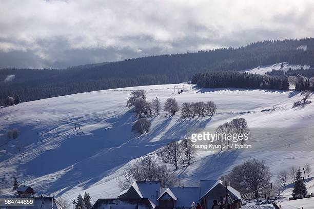 Scenic View Of Trees On Snow Covered Landscape