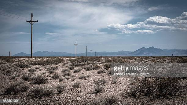 scenic view of utility poles on a wide arid land - nevada photos et images de collection