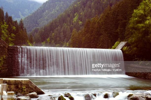 scenic view of waterfall against trees in forest - trabzon stock pictures, royalty-free photos & images