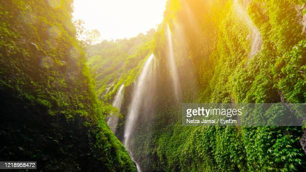scenic view of waterfall at mount bromo - mt bromo stock pictures, royalty-free photos & images