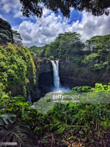 scenic view of waterfall in forest against sky - water fall hawaii stock pictures, royalty-free photos & images
