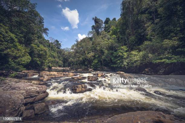 scenic view of waterfall in forest against sky - shaifulzamri stock pictures, royalty-free photos & images