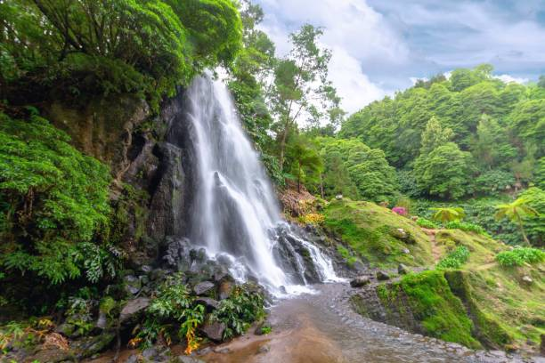 Scenic view of waterfall in forest against sky,Portugal