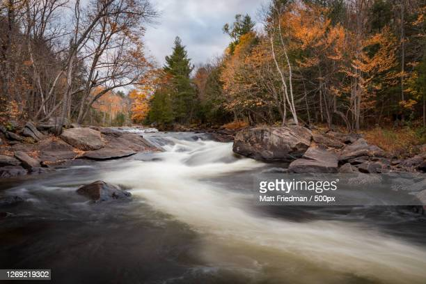 scenic view of waterfall in forest during autumn, huntsville, canada - ontario canada stock pictures, royalty-free photos & images