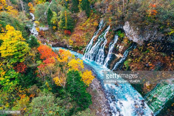 scenic view of waterfall in forest during autumn - 水流 ストックフォトと画像