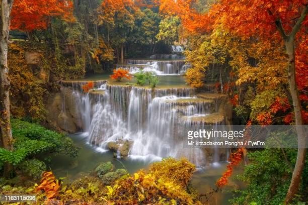scenic view of waterfall in forest during autumn - カンチャナブリ県 ストックフォトと画像
