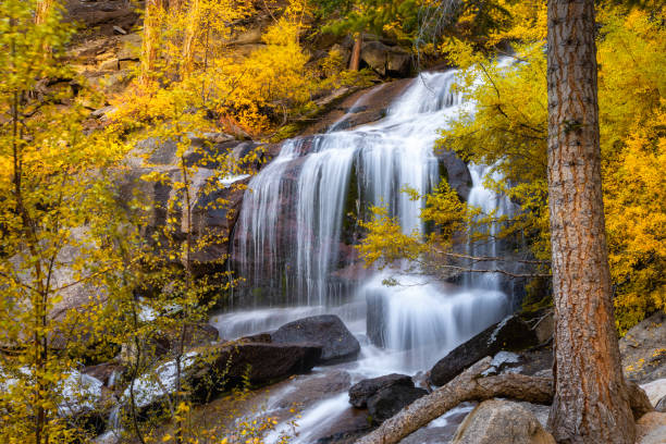 Scenic view of waterfall in forest during autumn,Lone Pine,Californie,United States,USA