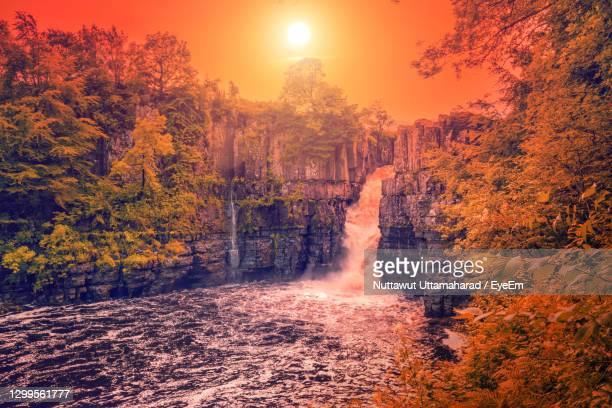 scenic view of waterfall in forest during sunset - stockton on tees stock pictures, royalty-free photos & images