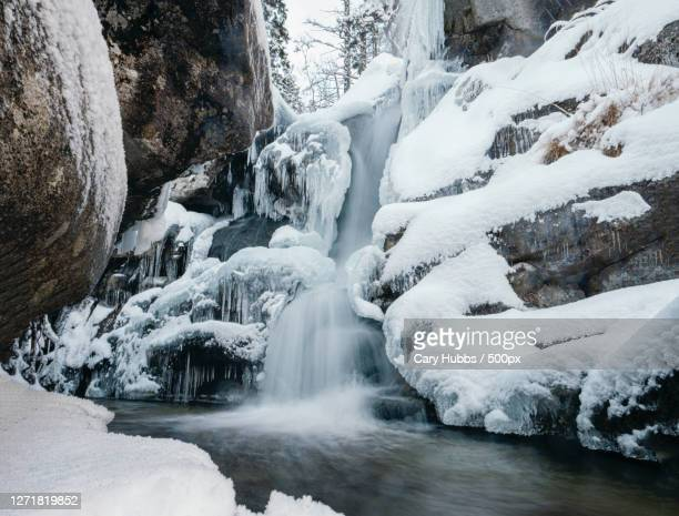 scenic view of waterfall in forest during winter, vysok tatry, slovakia - slovakia stock pictures, royalty-free photos & images