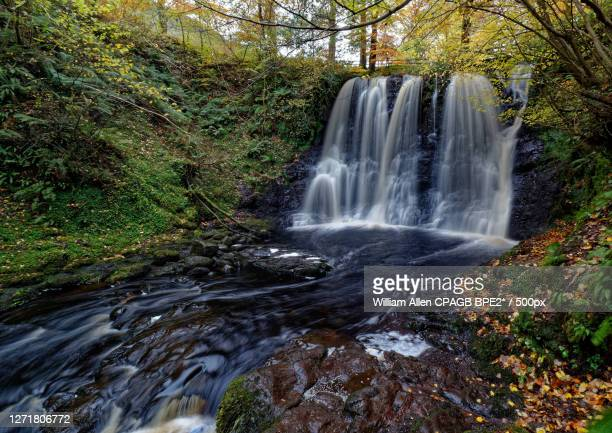 scenic view of waterfall in forest, glenariff, united kingdom - waterfall stock pictures, royalty-free photos & images