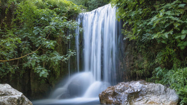 Scenic View Of Waterfall In Forest Long Exposure