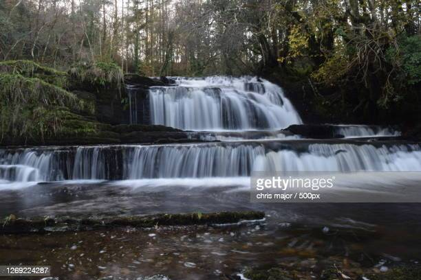 scenic view of waterfall in forest, manorhamilton, ireland - waterfall stock pictures, royalty-free photos & images