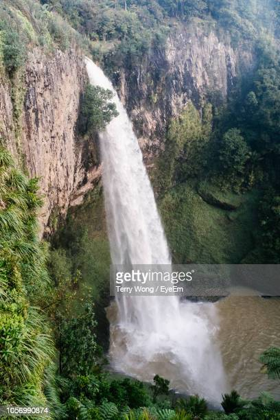scenic view of waterfall in forest - {{relatedsearchurl('london eye')}} stock photos and pictures