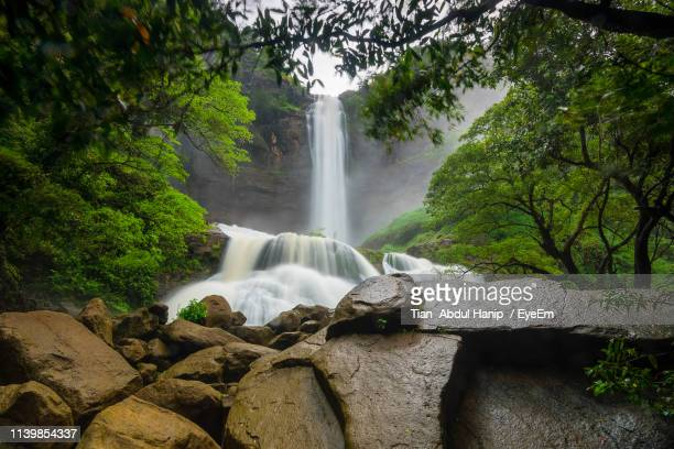 scenic view of waterfall in forest - tian abdul hanip stock photos and pictures
