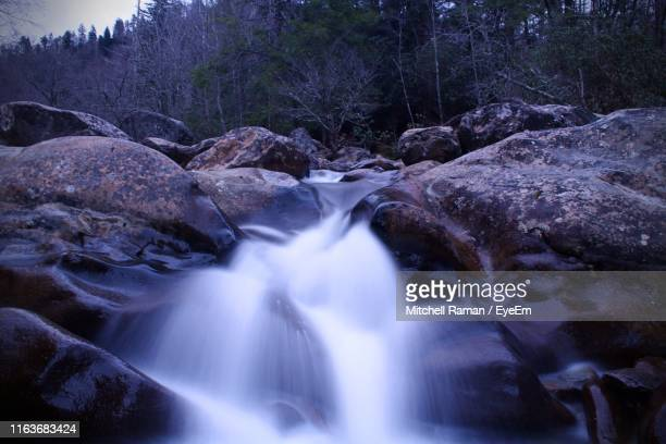 scenic view of waterfall in forest - brook mitchell stock pictures, royalty-free photos & images