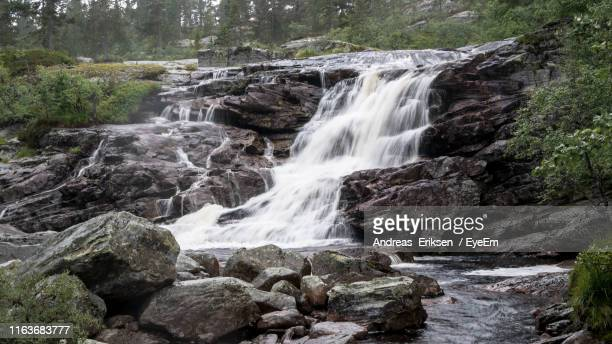 scenic view of waterfall in forest - eriksen stock pictures, royalty-free photos & images