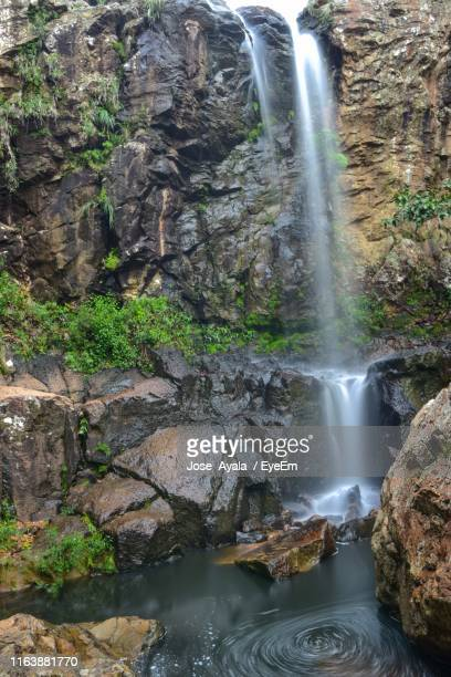 scenic view of waterfall in forest - jose ayala stock pictures, royalty-free photos & images
