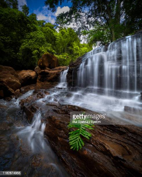 scenic view of waterfall in forest - makassar stock pictures, royalty-free photos & images