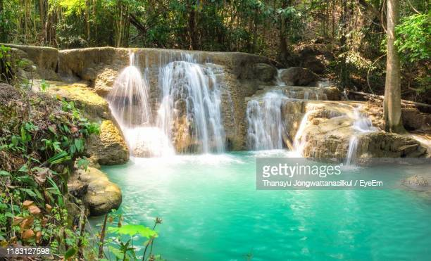 scenic view of waterfall in forest - 水流 ストックフォトと画像